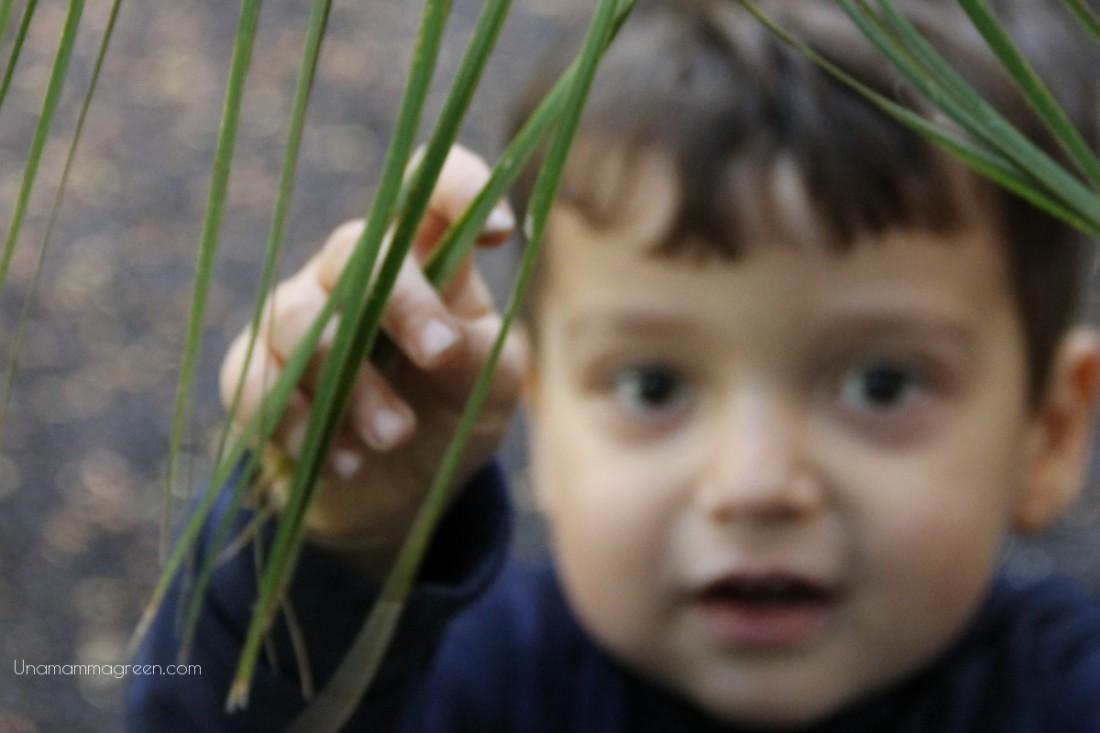 natura e bambini