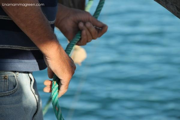 dimostrazione pesca trabucchi