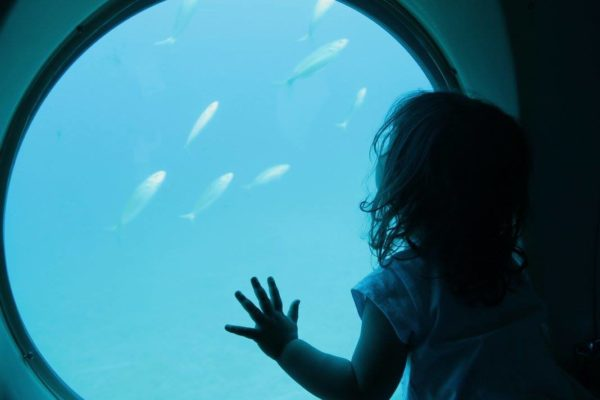 lanzarote bambini sottomarino