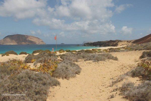 playa de las conchas isla graciosa bambini