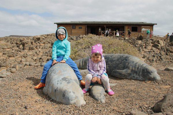 isla de lobos fuerteventura con bambini