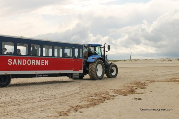 grenen danimarca on the road bambini