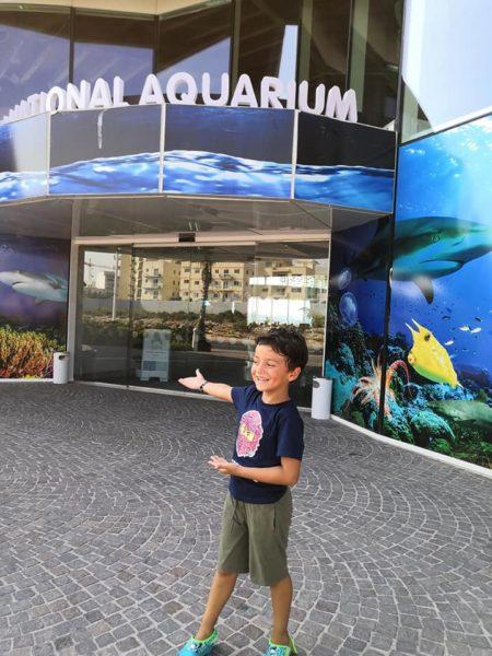 viaggio a malta con bambini, l'acquario nazionale