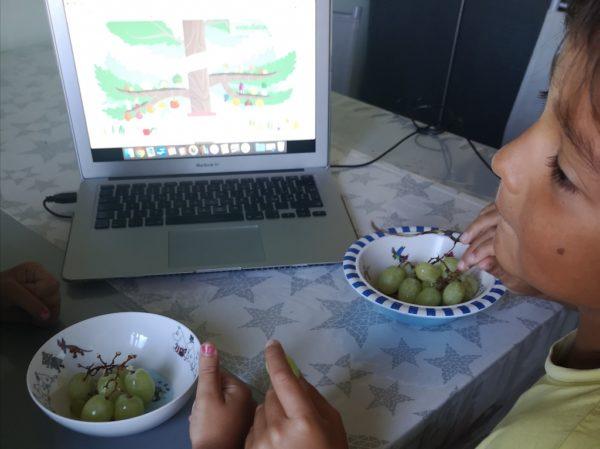 frutta biologica di stagione