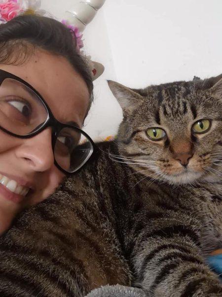 adottare un gatto lati negativi